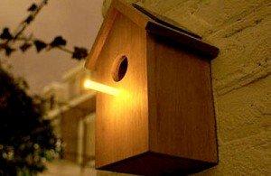Installer des nichoirs à oiseaux, des refuges pour la faune ? dans B. BÂTI 1550527250-300x195